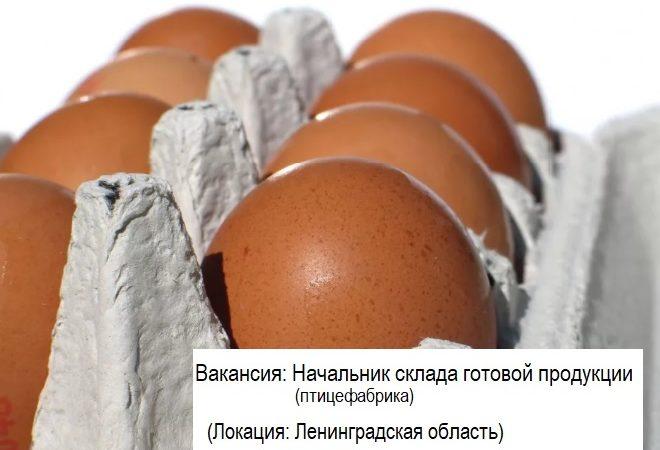Начальник склада готовой продукции (птицефабрика)